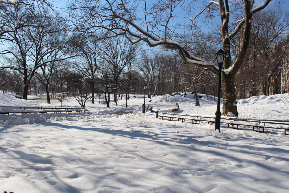 central park in snow