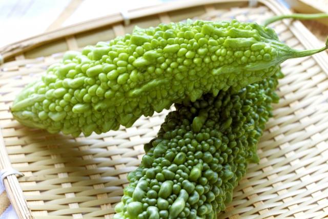 夏バテを予防・解消する食材5選ーゴーヤ