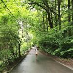 森林浴の効果と東京23区内で気軽に行ける「プチ森」4選
