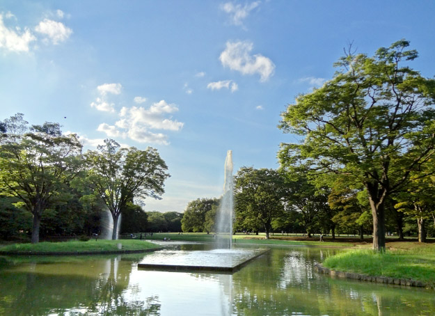 森林浴の効果と東京23区内で気軽に行ける「プチ森」4選ー代々木公園