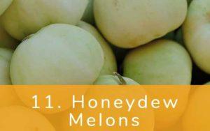 ハニーデューメロン-Clean Fifteen(クリーンフィフティーン)-野菜って全て有機(オーガニック)がいいの?農薬の影響を受けやすい野菜と果物リスト
