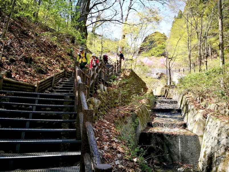 階段つらい-東京とは思えない!檜原都民の森で森林セラピーロードを歩いてきたよ-yumiid.com
