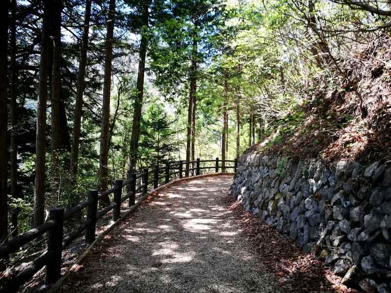 東京とは思えない!檜原都民の森で森林セラピーロードを歩いてきたよ-yumiid.com