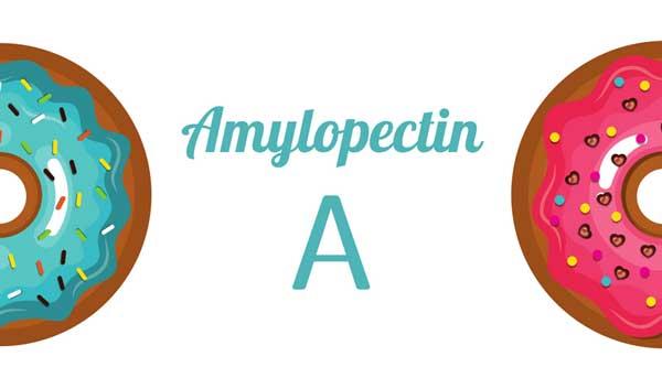 アミロペクチンA-グルテンフリーについて理解しよう-なぜ小麦粉は食べない方がいいの?-yumiid.com