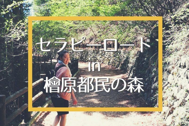 東京とは思えない!檜原都民の森で森林セラピーロードを歩いてきたよ