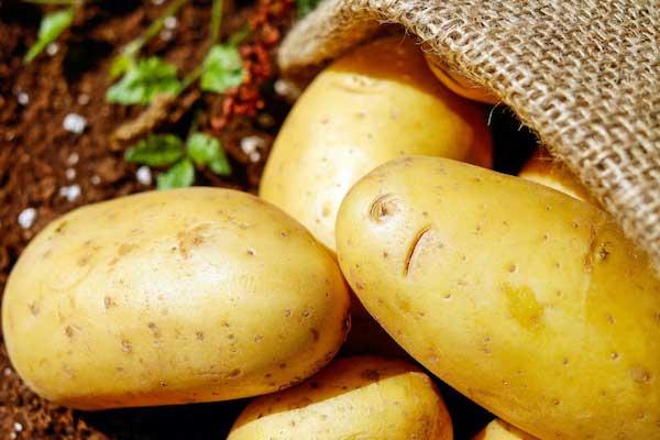 でんぷん質の野菜を野菜にカウントしている-なかなか痩せないという時に陥っているかもしれない3つの間違い-yumiid.com