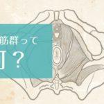 骨盤底筋群って何?妊娠・出産をする女性なら知っておきたい骨盤底筋群の役割