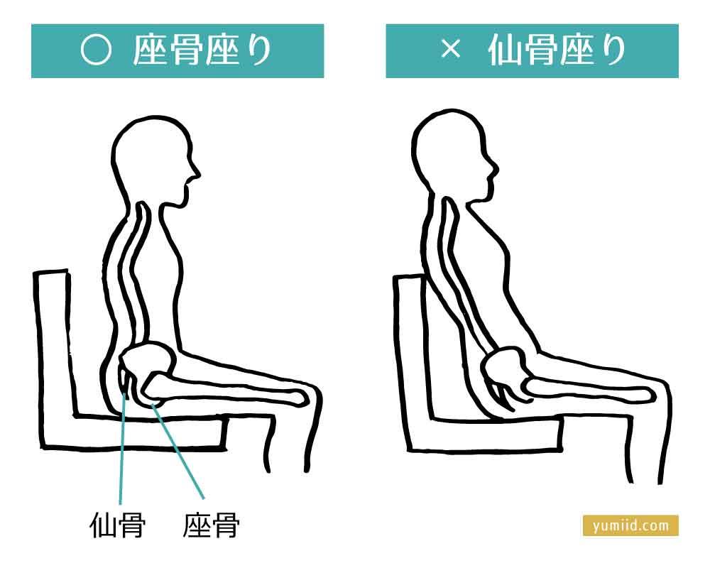 仙骨座りと座骨座り 腰痛の原因を作る体の使い方。